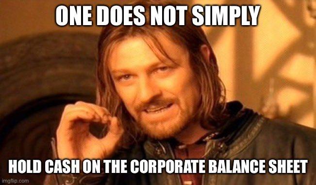 One does not simply hold cash on corporate balance sheet, říká Aragorn. Akciové společnosti to začínají chápat.